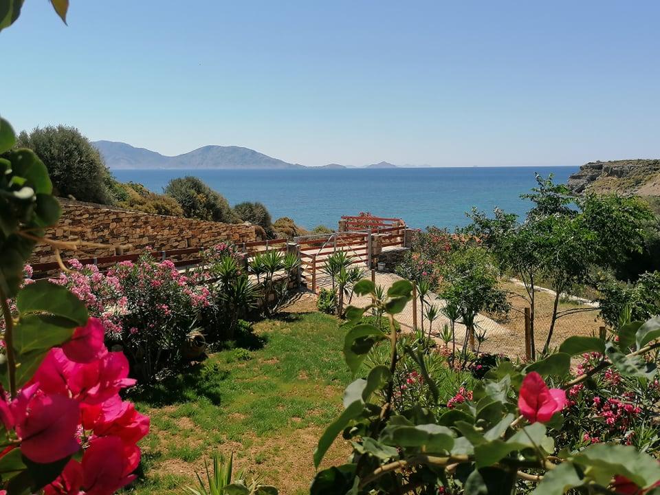 Veranta view